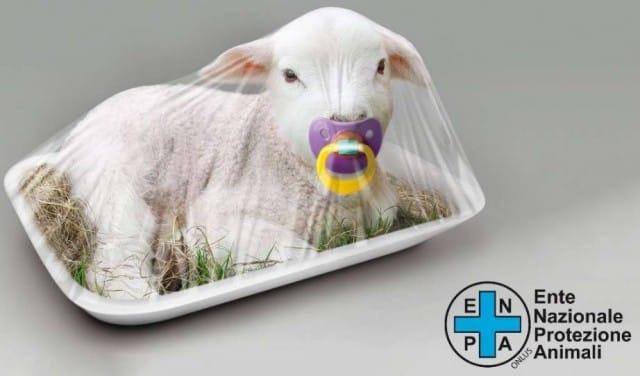 strage-degli-agnelli-a-pasqua-puoi-firmare-per-fermarla (2)