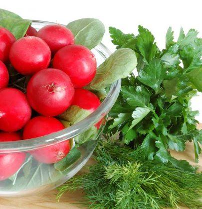 Cucinare con gli scarti: due ricette gustose per non sprecare le foglie dei ravanelli, il pesto e la frittata