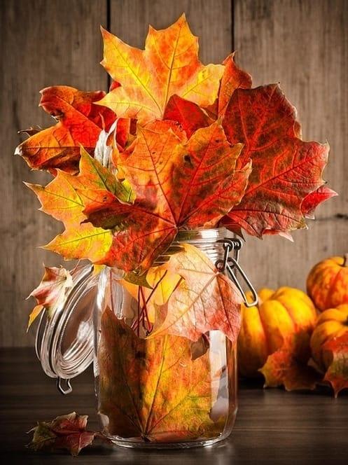 Come riutilizzare le foglie secche per decorare casa e per la cura dell'orto e del giardino