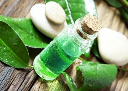 effetti benefici del tea tree oil