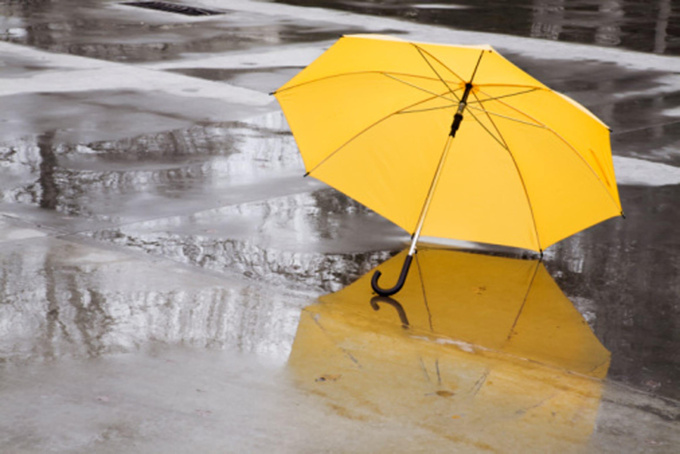 Fioriere Originali Fai Da Te come trasformare un ombrello in una borsa | foto - non sprecare