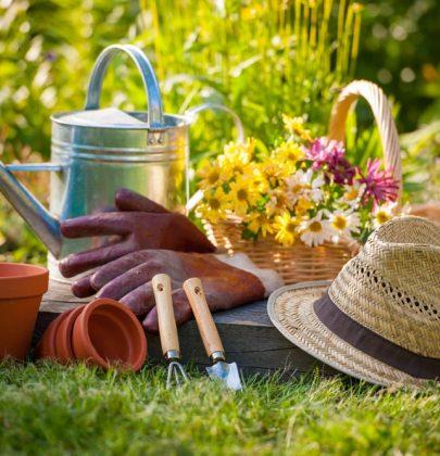 La semina, il raccolto e tutti i lavori da fare nell'orto durante il mese di maggio