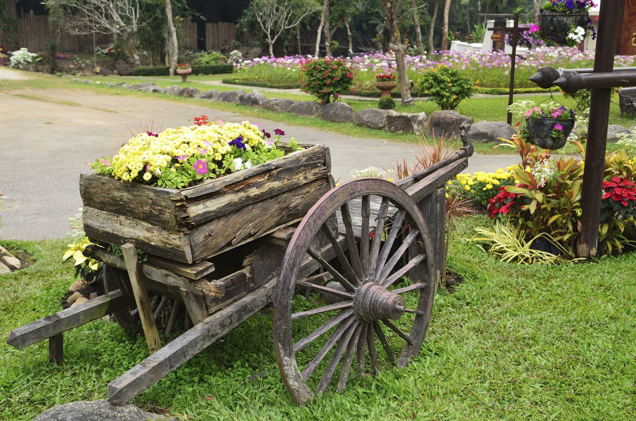 Piante Piccole Da Giardino giardino ecosostenibile e contro gli sprechi: 5 consigli