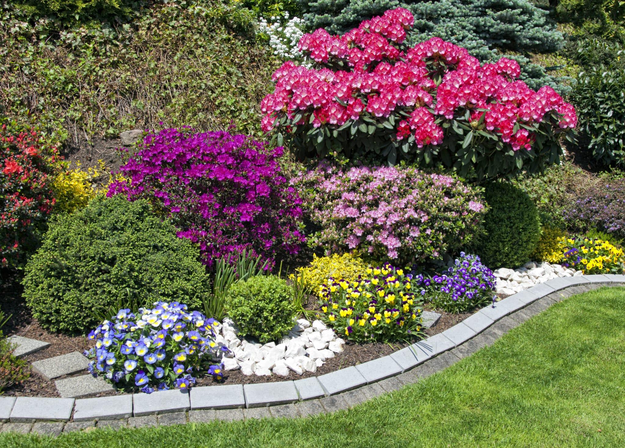 Piccoli Alberi Da Giardino giardino ecosostenibile e contro gli sprechi: 5 consigli
