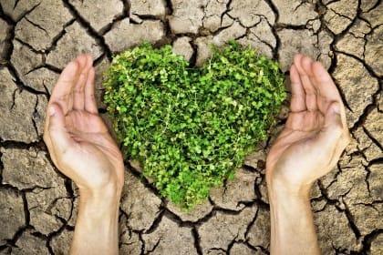 Consumo di suolo in Italia: come risolvere il problema