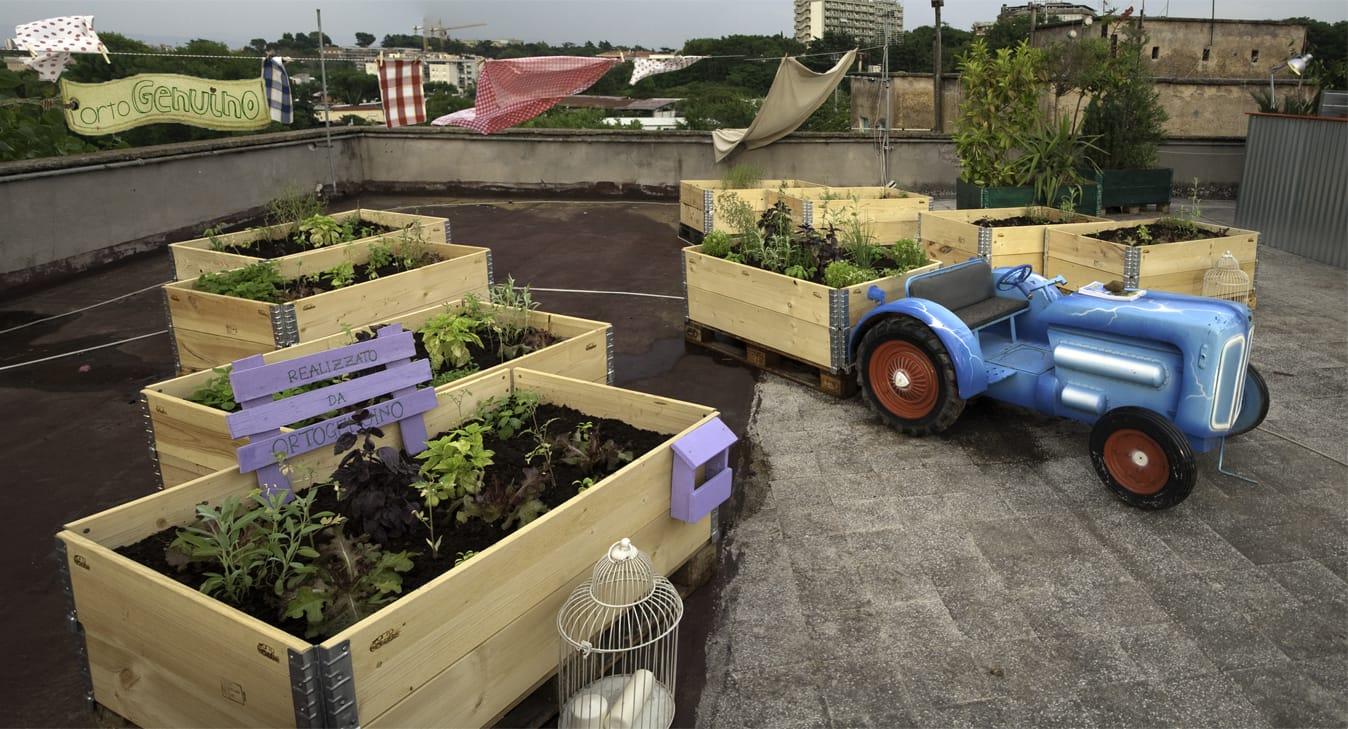 OrtoGenuino, un'azienda che promuove la diffusione di orti urbani in ogni casa