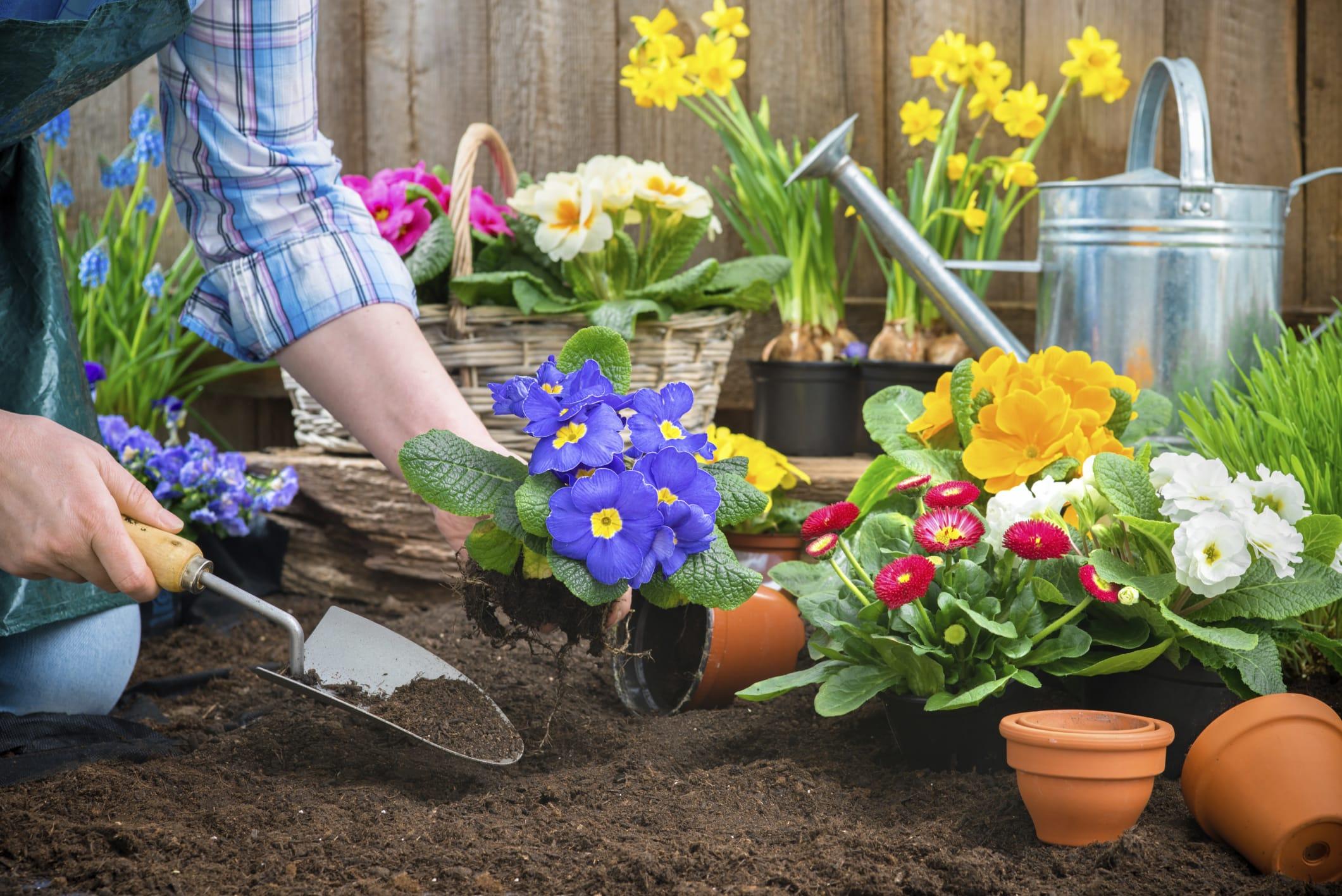 Attrezzi da giardino a batteria: leggeri, maneggevoli e facili da utilizzare