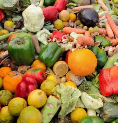 Sprechi di cibo: perché serve una legge come quella approvata in Francia