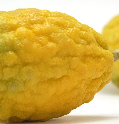 Cedro, proprietà e benefici per la salute e tre deliziose ricette per gustarlo in insalata