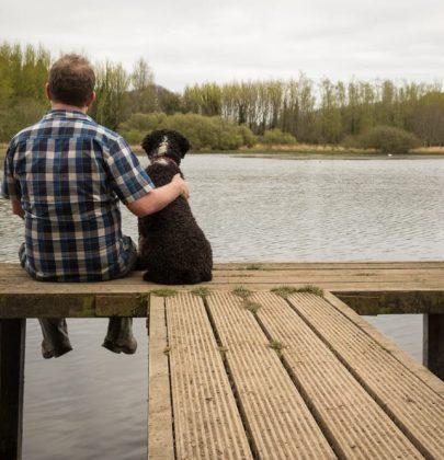 Legame tra cane e padrone, si rafforza con lo sguardo e passeggiando insieme