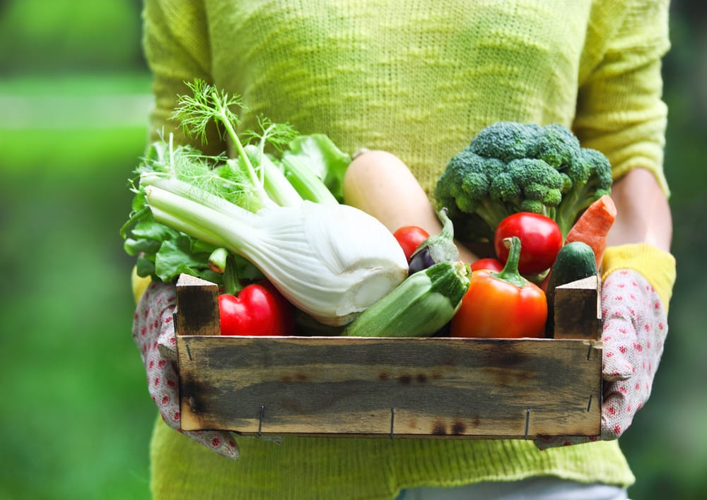 Frutta e verdura estiva