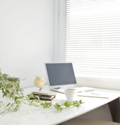 Pollice verde anche al lavoro: 5 piante da coltivare in ufficio per stare meglio