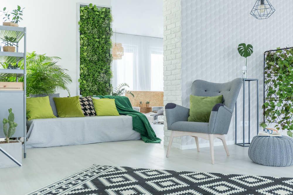 come arredare la casa con le piante - non sprecare
