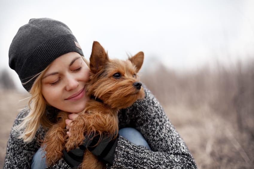 Come fare felice un cane