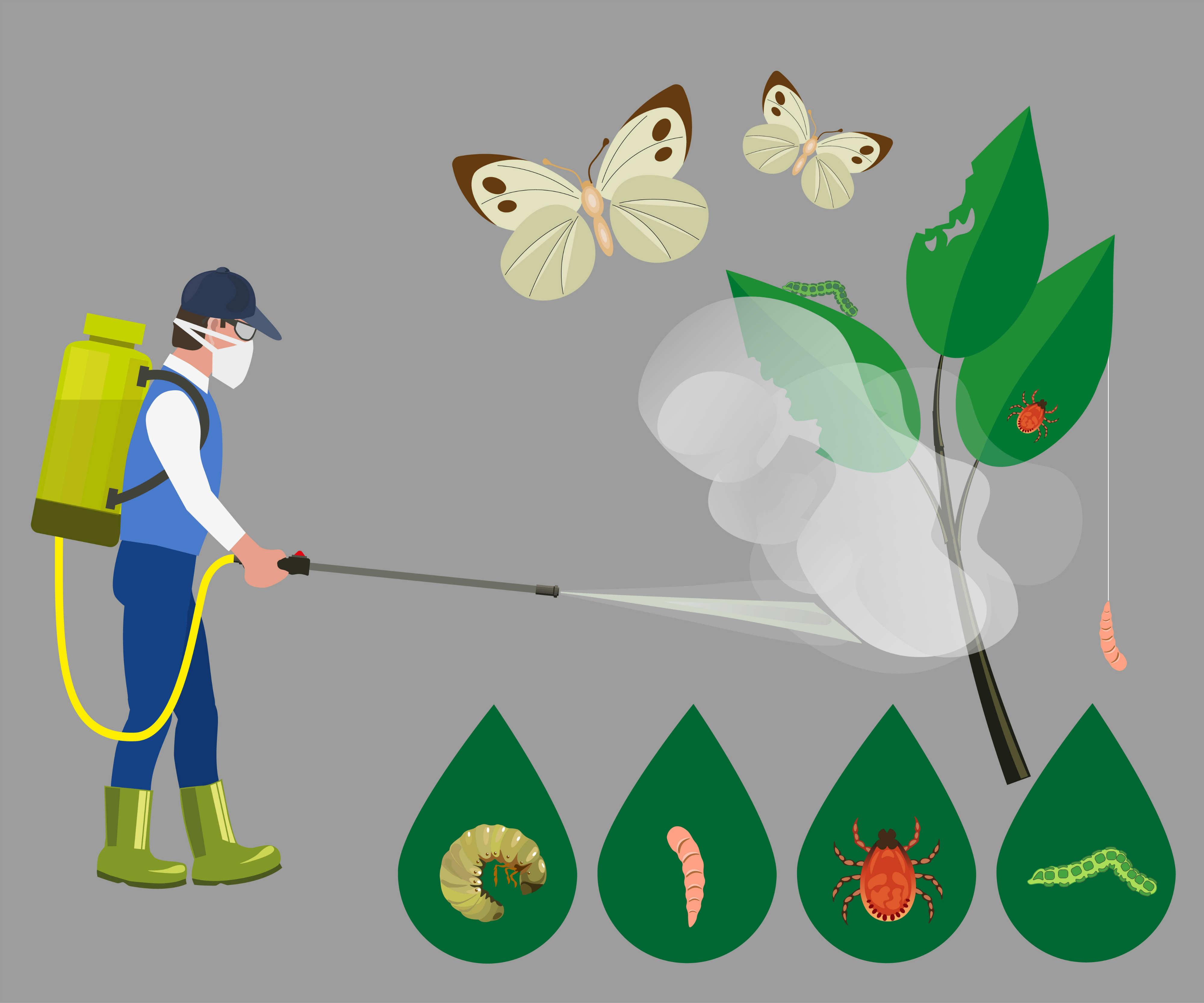 frutta e verdura con più pesticidi