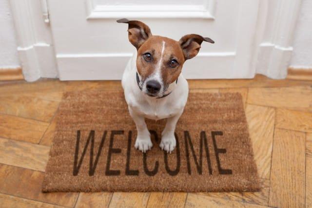 come-ricevere-ospiti-a-casa (2)