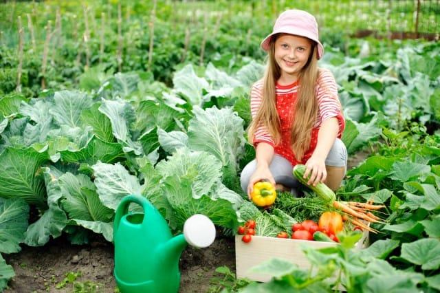 corsi-per-coltivare-orto-scuole-associazioni-italia (3)