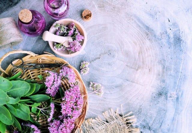 mercato-cosmetici-biologici-italia-aumento-vendite (2)