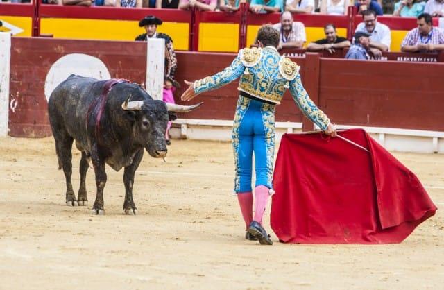 perche-vietare-la-corrida (4)