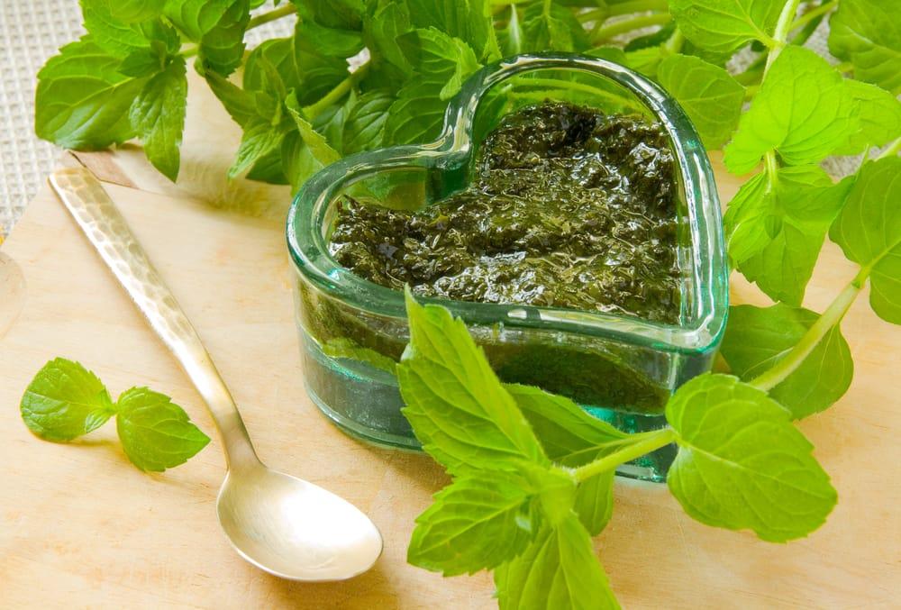 Come preparare la salsa alla menta