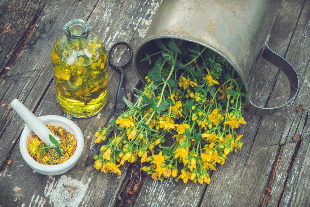 proprietà e benefici olio di iperico