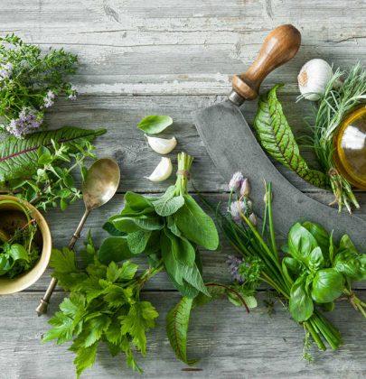 Cucina delle erbe spontanee, le migliori ricette. Dall'insalata di fiori ai dolci con le rose selvatiche