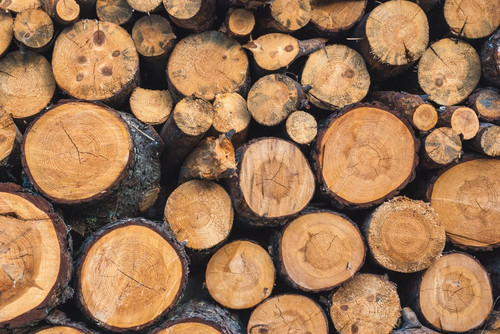 Come sistemare la legna per il camino non sprecare for Come sistemare la casa