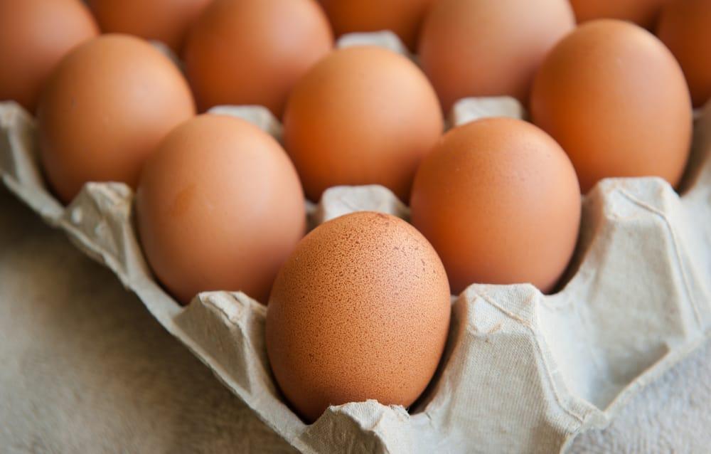 riciclo creativo cartone delle uova
