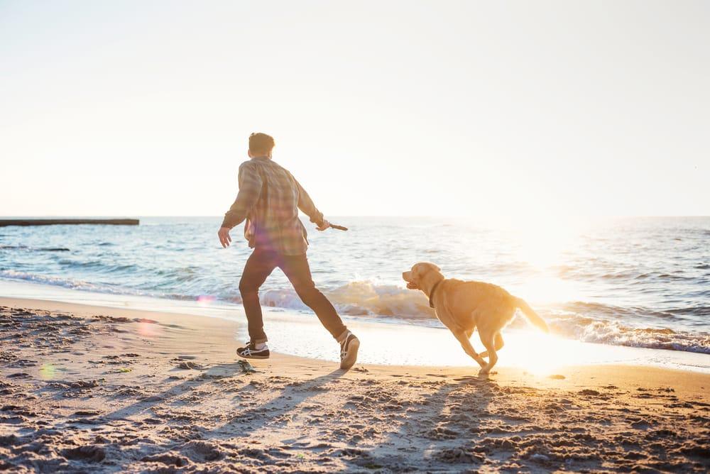come fare sport con il cane