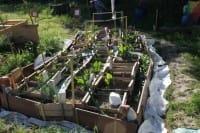 agro-ecologia-urbana-1