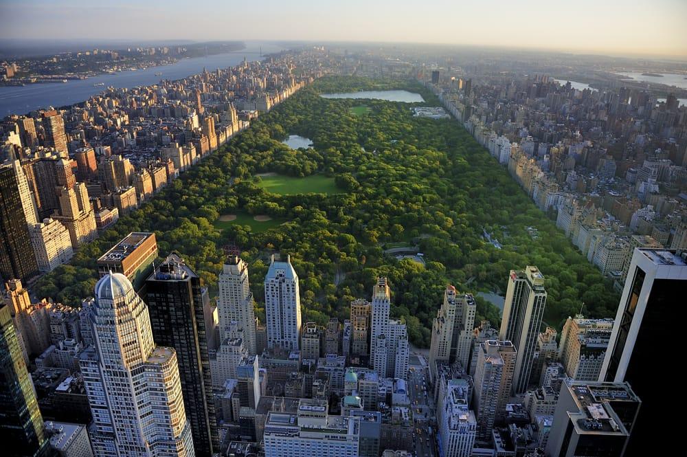 la vera anima di new york