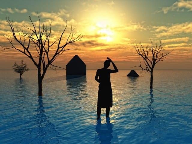 EFFETTI DEI CAMBIAMENTI CLIMATICI2