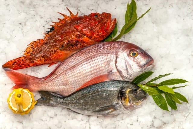 etichette del pesce