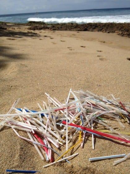 cannucce-di-plastica-inquinamento-impatto-ambientale (2)