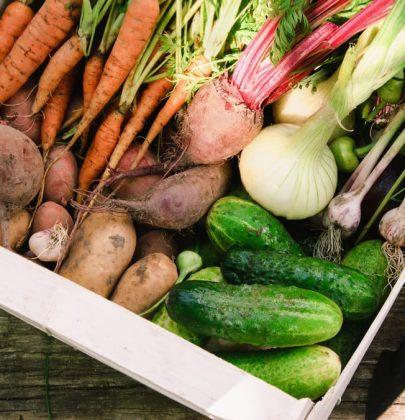 Orto a luglio: seminate carote e radicchio, raccogliete le melanzane