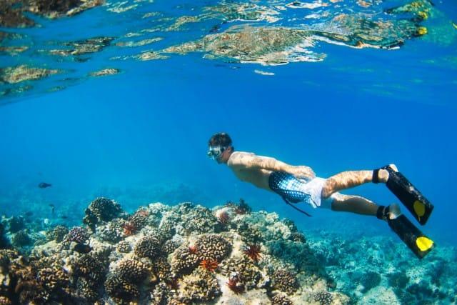 come-fare-snorkeling (4)