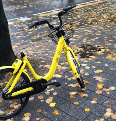 Bici nel Tevere, nel Po, nell'Arno, nei Navigli. E i vandali delle due ruote restano sempre impuniti (foto)
