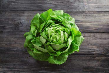 come coltivare la lattuga in vaso