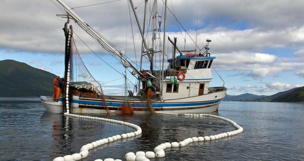pesca elettrica