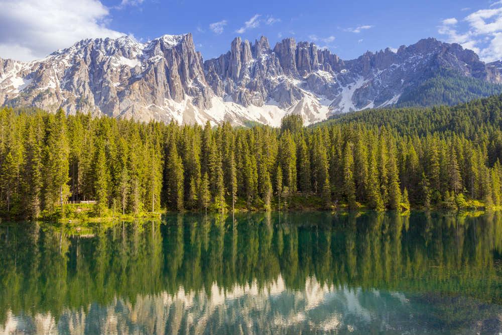 nuova legge forestale nazionale