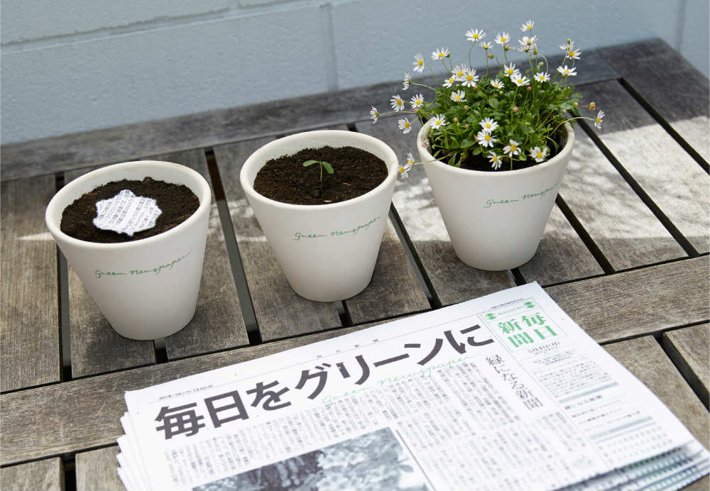 giornale che diventa pianta