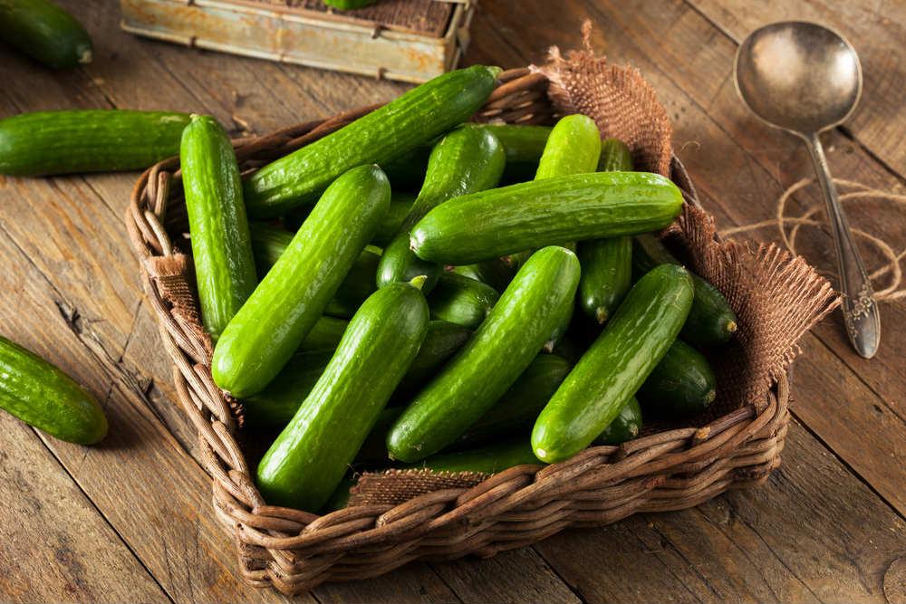 proprietà e benefici del cetriolo