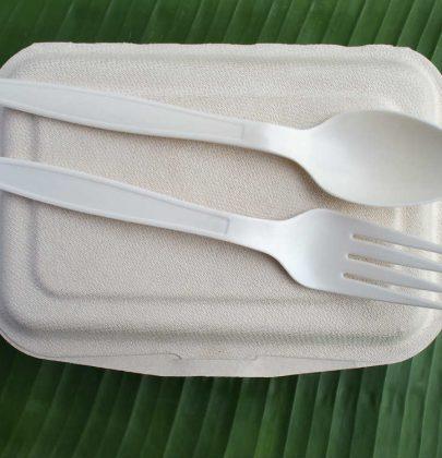 Bioplastica, i vantaggi di un materiale prodotto da scarti agricoli. E' biodegradabile e riciclabile. E non inquina (foto)