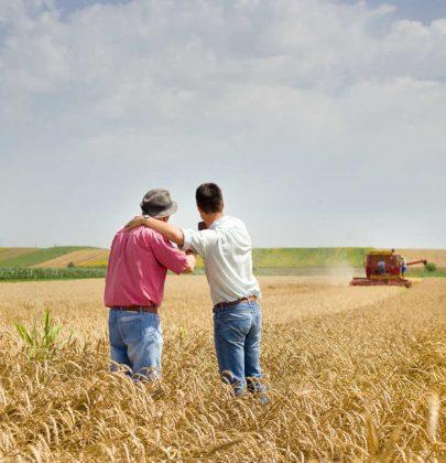 Oltre 2mila disabili, in gran parte autistici, si curano lavorando nei campi. Le storie di un miracolo italiano: l'agricoltura sociale (foto)