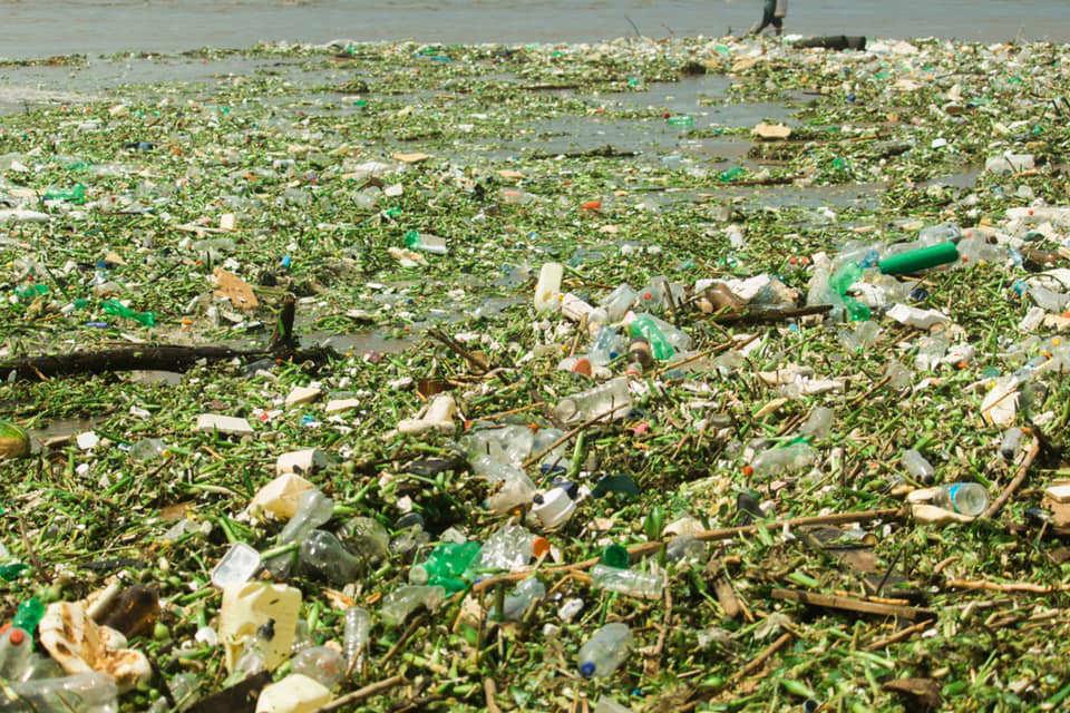 inquinamento marino sudafrica