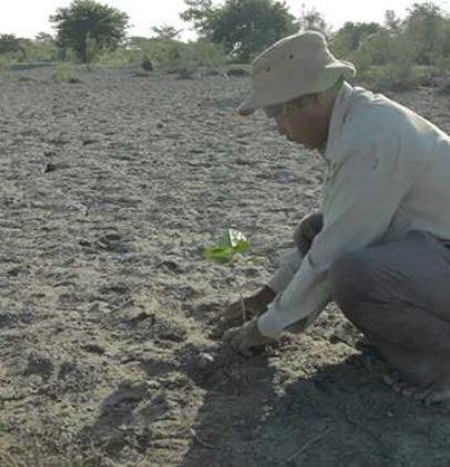 Jadav Molai Payeng, l'uomo della foresta. In India ha piantato, da solo, 550 ettari di bosco