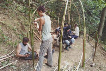 università del bosco