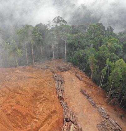 Cambiamenti climatici, ancora una volta molto lontani dagli obiettivi prefissati