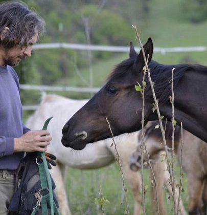 Sonny Richichi, dal posto fisso al fango sugli stivali. Per salvare i cavalli maltrattati