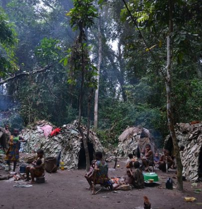 Pigmei, il popolo della foresta che custodisce e protegge la natura